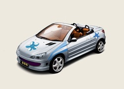 Peugeot-206-tuning-gry